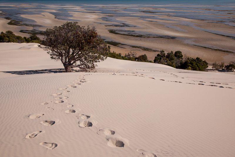 Moreton Island, QLD, Australia